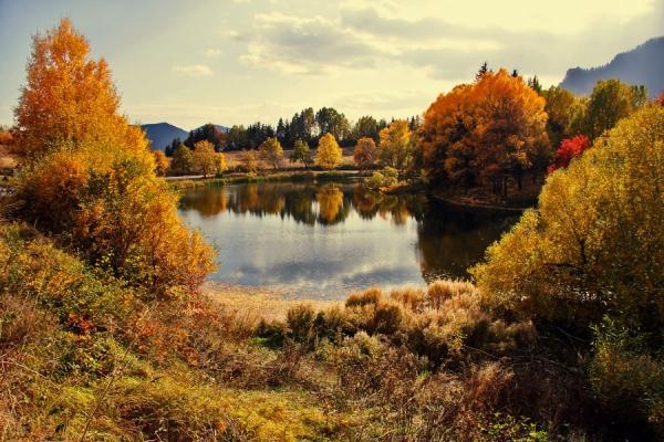 Есенна идилия