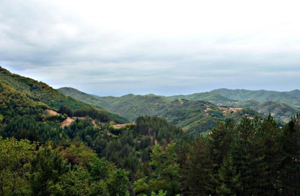Изглед от връх Св