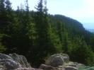 Красивите Родопи